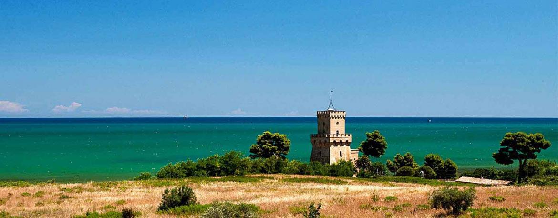 Matrimonio Sulla Spiaggia In Italia : Da tutta italia a pineto per sposarsi sulla spiaggia